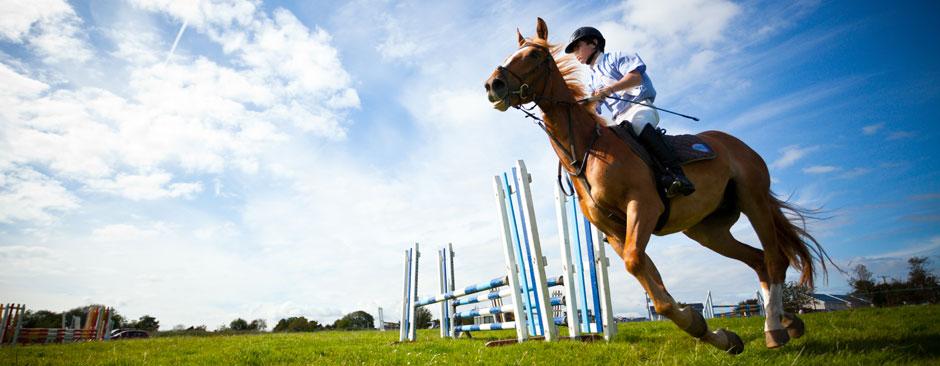 equitazione a Jesolo