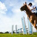 Equitazione a Cavallino: ne vale la pena!