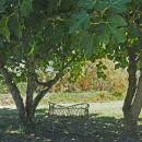 giardino torcello